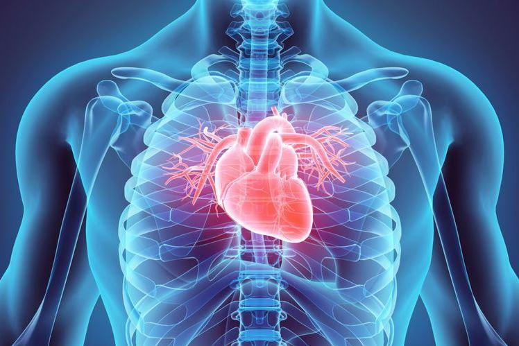 Ini Dia Gejala, Penyebab, dan Pencegahan Penyakit Jantung Koroner